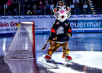 Thomas Sabo Ice Tigers vs. Kšlner Haie